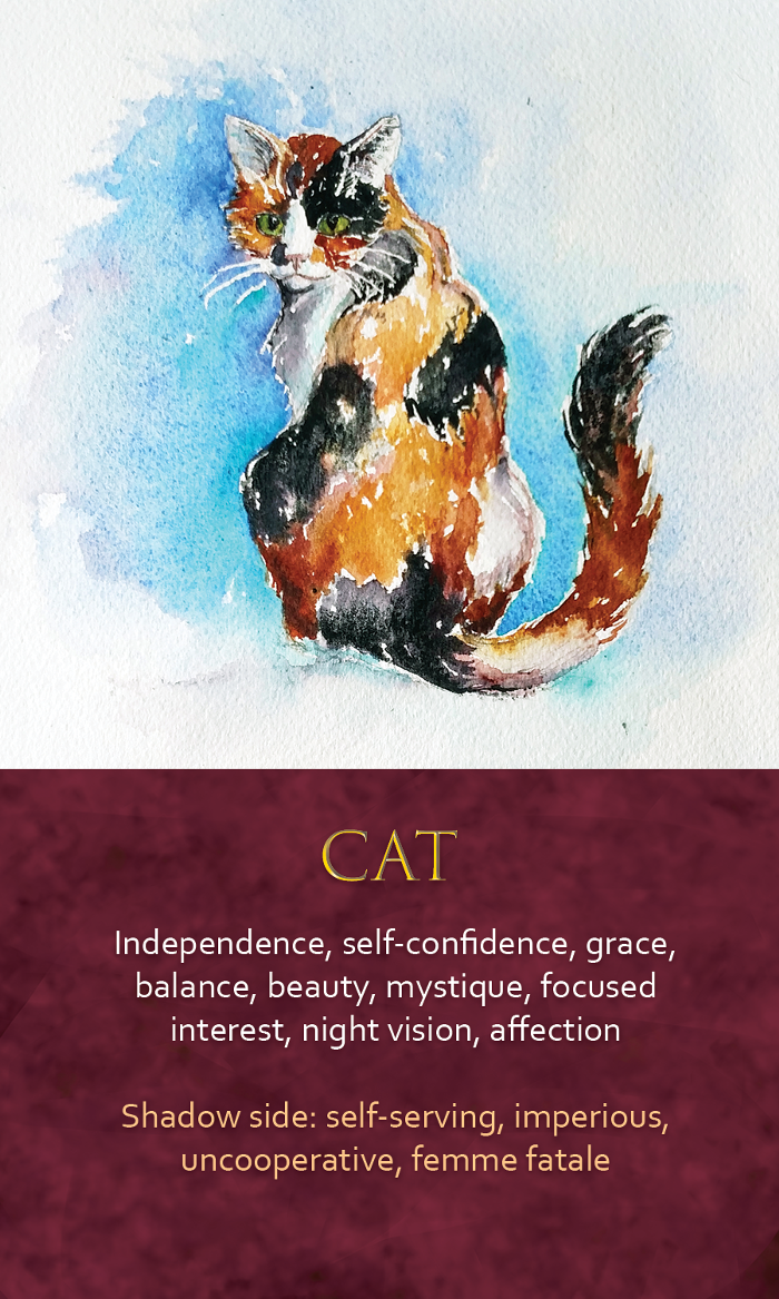 40-spirit-animal-oracle-card-Cat.png