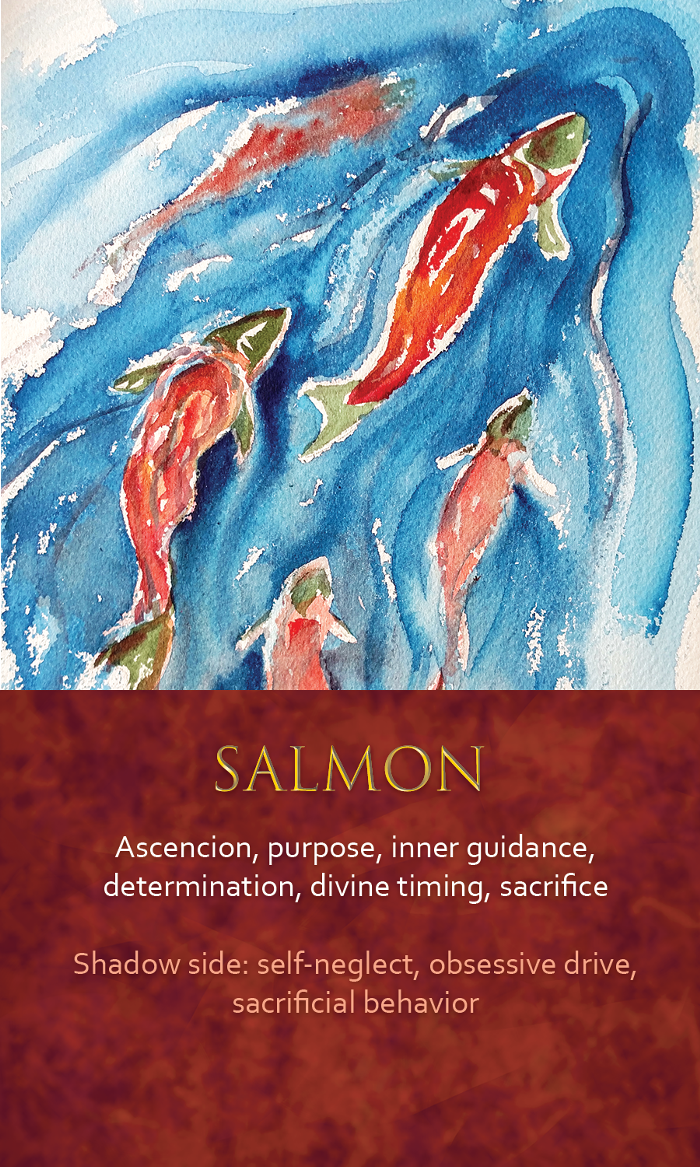 42-spirit-animal-oracle-card-Salmon.png
