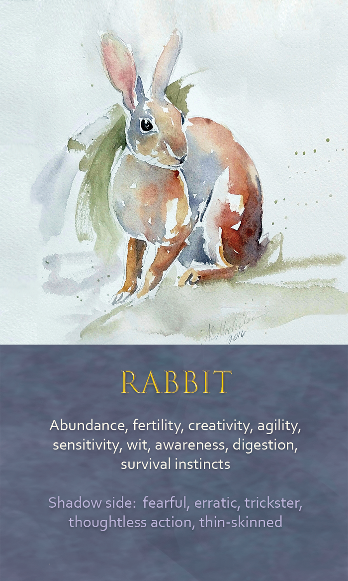 5-Spirit-animal-oracle-card-Rabbit.png
