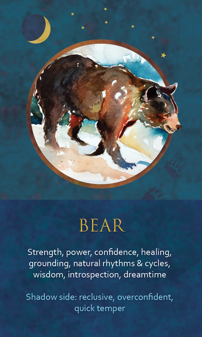 8-Spirit-Animal-Oracle-Card-Bear.png