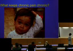 Pediatric Perspectives on Chronic Pain