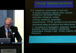 REVIEW OF THE 2013 CSF RESEARCH COLLOQUIUM & CONSENSUS ON CRANIOCERVICAL INSTABILITY