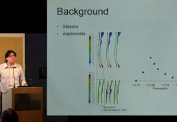Potential Cerebrospinal Fluid Flow Pathways in the Development of Syringomyelia