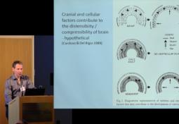Pathogenesis and Pathology of Hydrocephalus