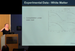 Pilot, Multi-Scale Numerical Framework for Brain Mechanics