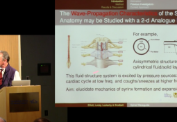 The Spinal Cord and Meninges as a Fluid-Filled Elastic Waveguide in Syringomyelia