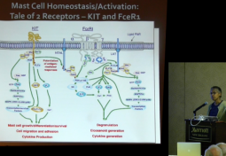 Mast Cell Activation Syndrome and the Autonomic Nervous System
