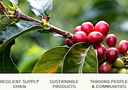 New Keurig 2020 Posts in 2020: Keurig Green Mountain Sets New Sustainability Targets
