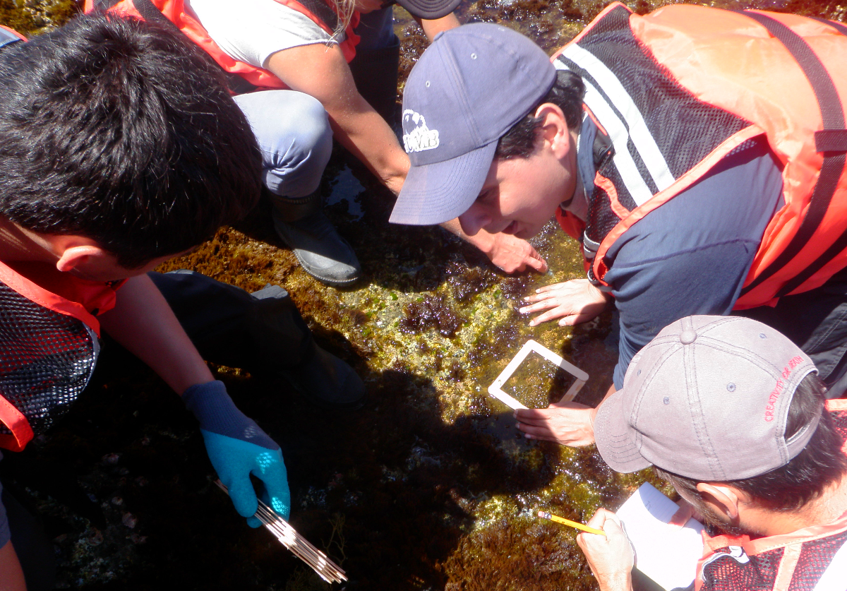 Corey Garza leading CSUMB student researchers at Catalina Island