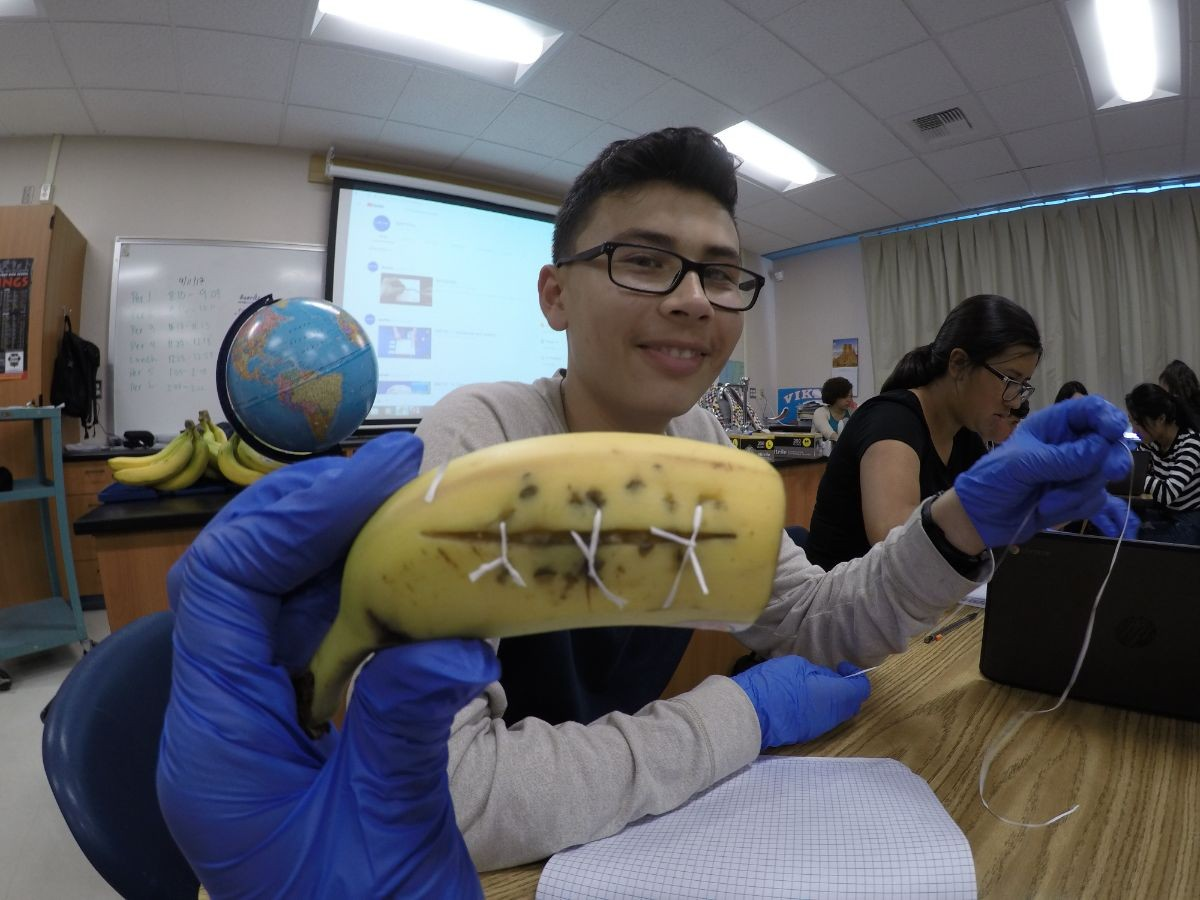 Osvaldo showing off his banana sutures during the Suturing Lab