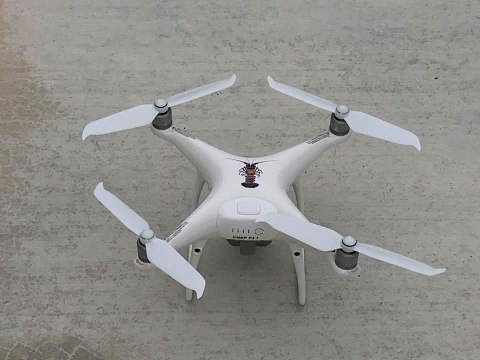 Drone Panulirus