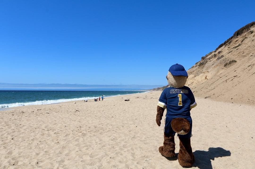 mascot on the beach