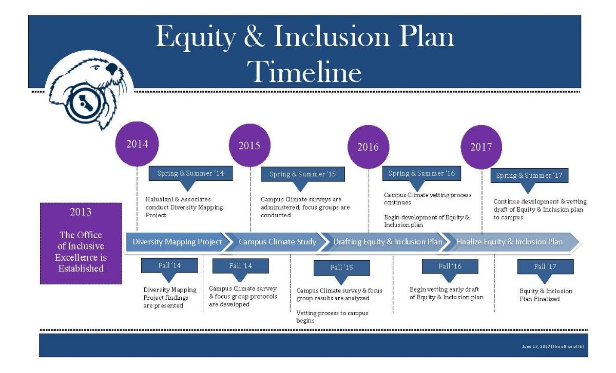 Equity & Inclusion Plan Timeline