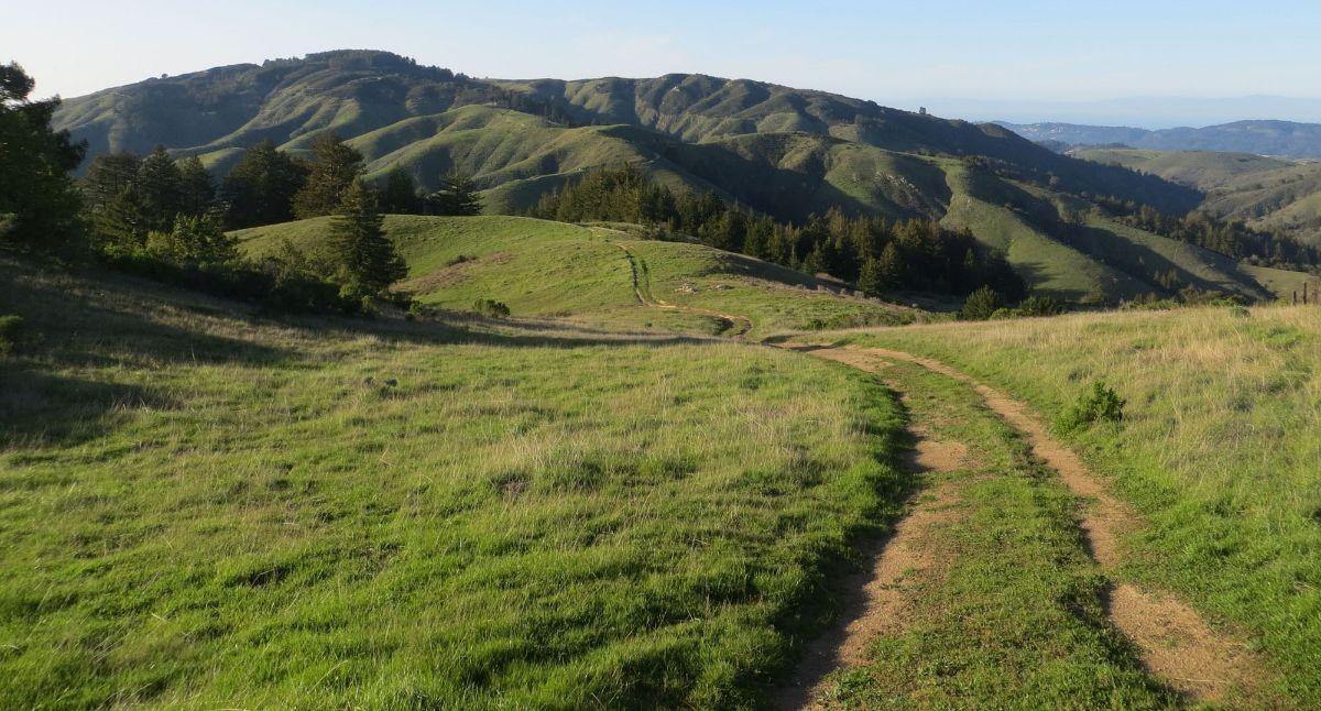 Palo Corona Regional Park landscape