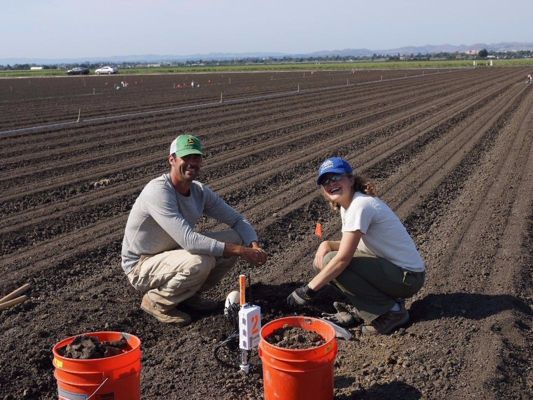 Students conducing research in agricultural field