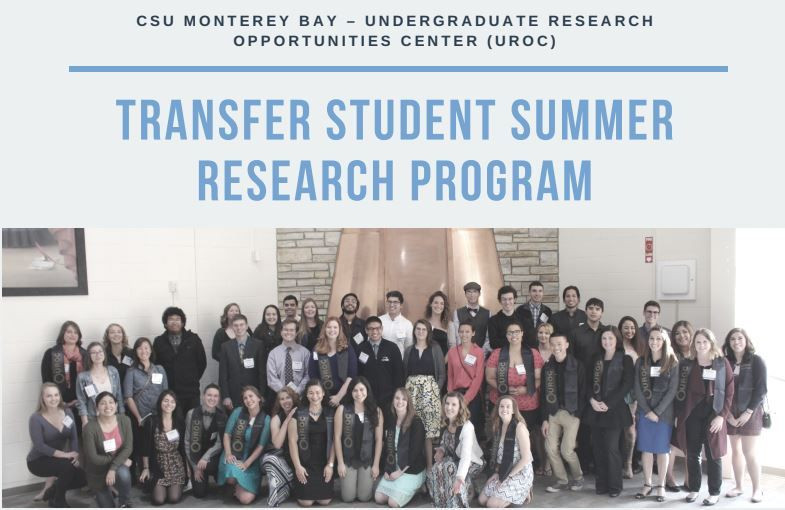 Transfer student summer research program group