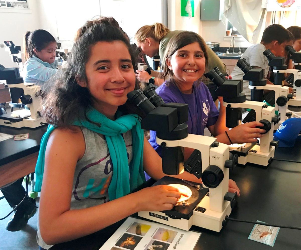 campers looking at plankton in a microscope