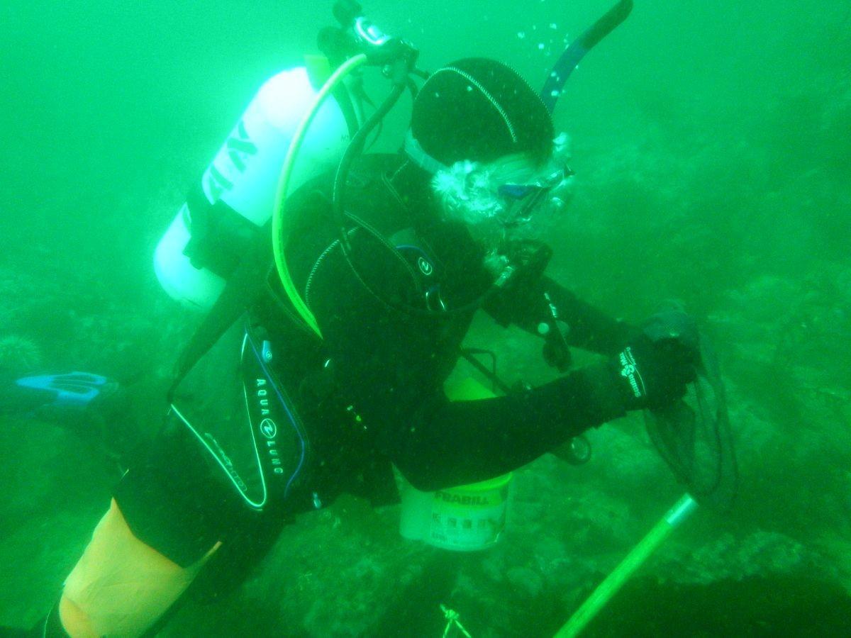 Jake SCUBA diving