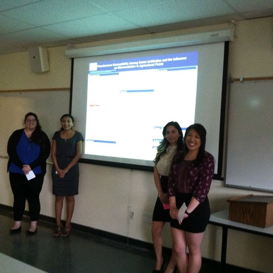 Students presenting at Capstone Festival