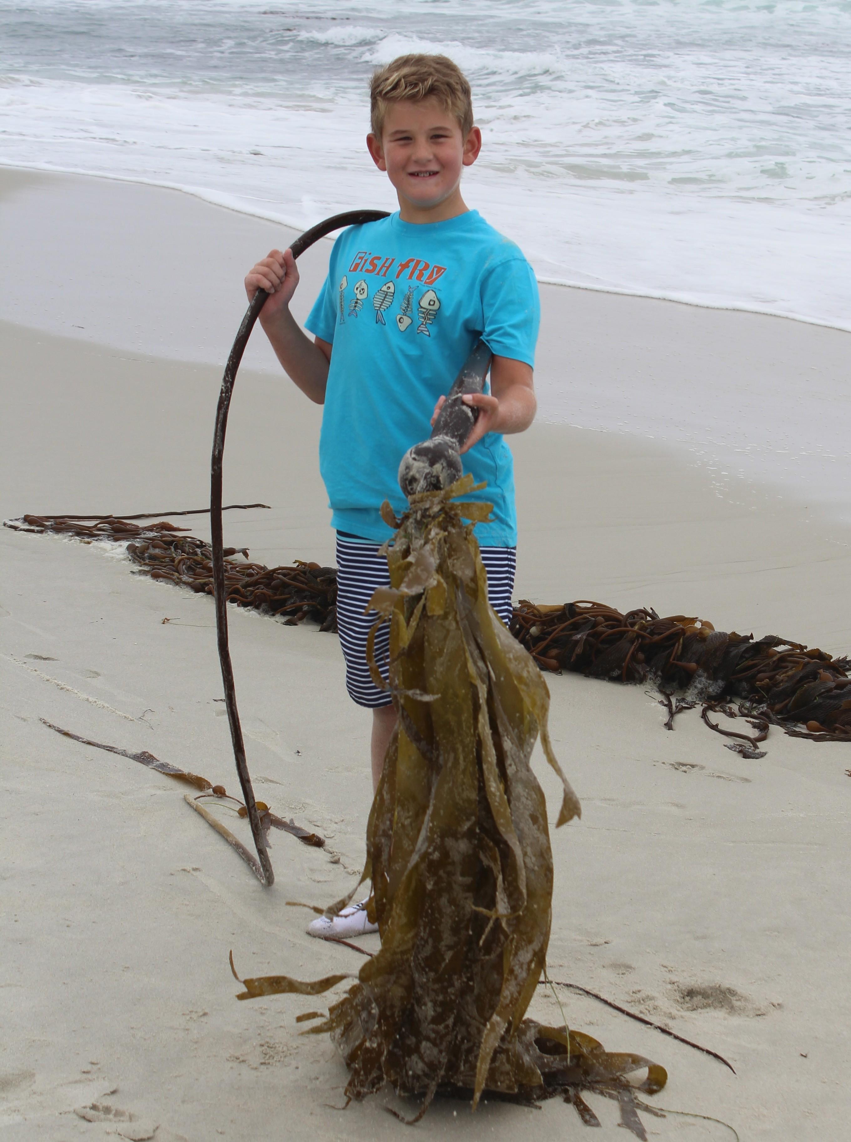 Camper holding kelp