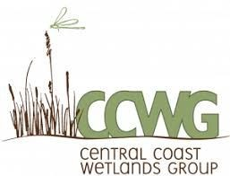 """Wetland vegetation with """"CCWG"""" in green text beside it"""
