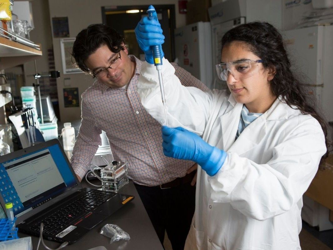 Student conducting research in lab with faculty advisor