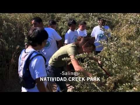 Natividad Creek Park