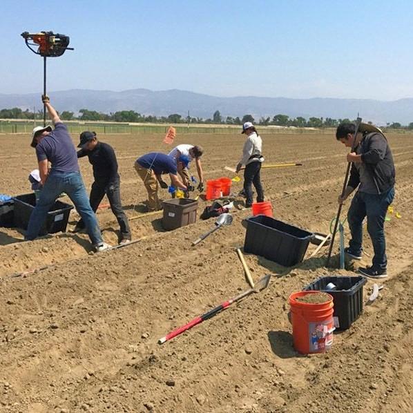 CSUMB students working on farm