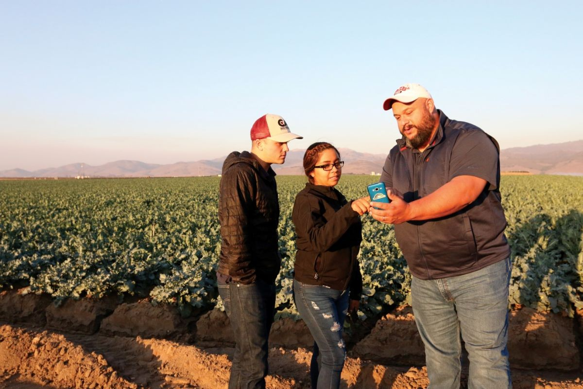 Three employees use a HeavyConnect mobile app by a broccoli field in Salinas.