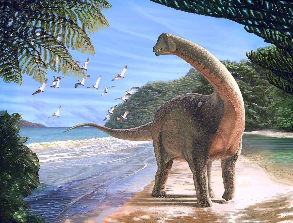 Mansourasaurus Illustration