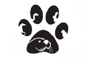 paw print with otter logo