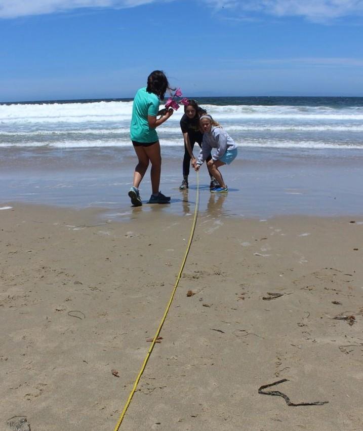 Students sand crabbing