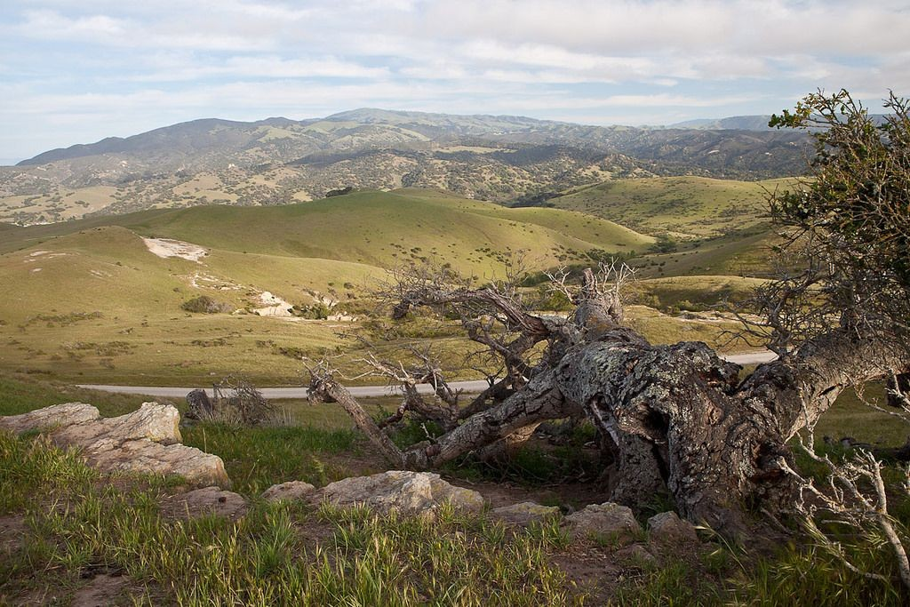 Landscape view of Fort Ord National Monument