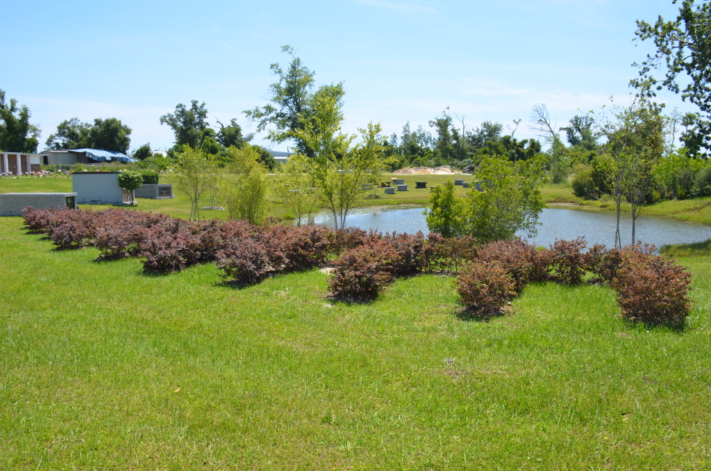 Raintree Hedged Estates