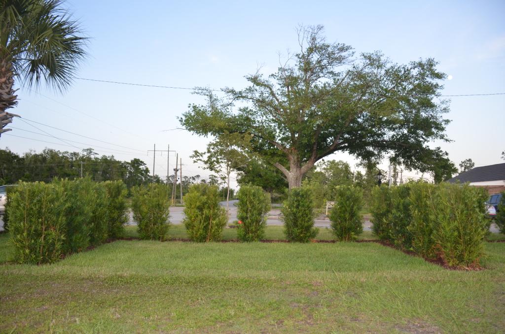 Devotion Hedged Estates