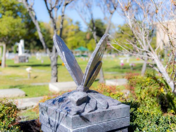 Los Gatos Memorial Park Grounds
