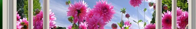 Floral-145