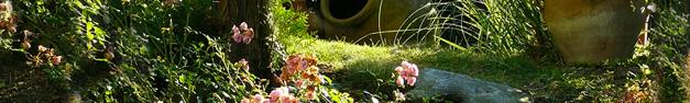 Garden-141