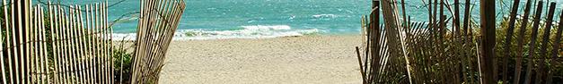 Beach-339