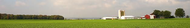 Barn-Farm-Scene-362