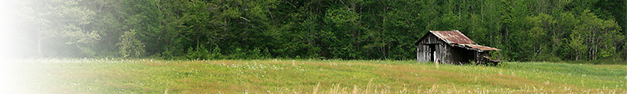 Barn-Field-347