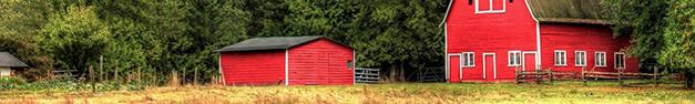 Red-Barn-344