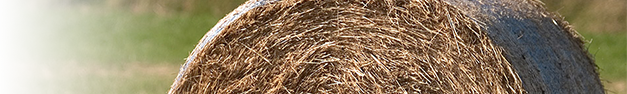 Wheat-Bale-350