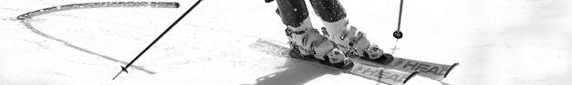 Ski-241