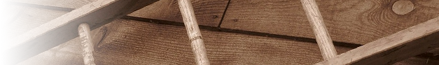 Ladder-262