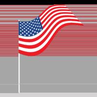 gesture flag_usa