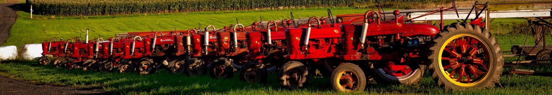 Red Tractor 03