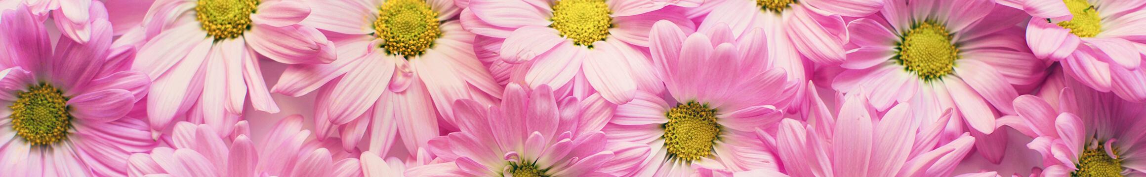 Floral 18