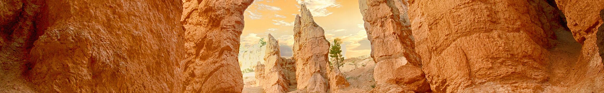 Landscapes 10