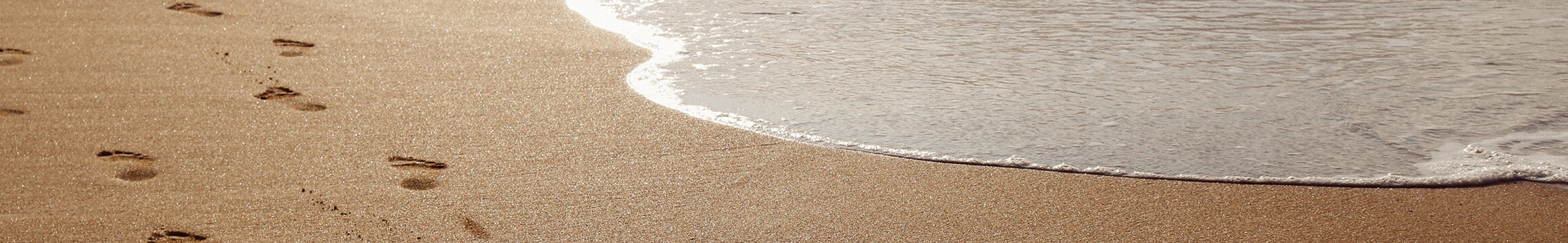 Ocean Beach 11